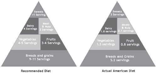 recomended-diet.jpg