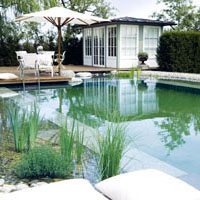 natural-pool_1.jpg