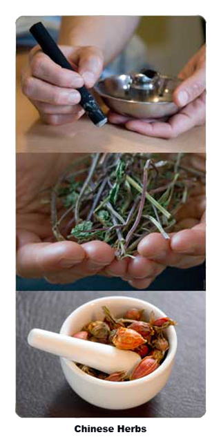 chinese-herbswcaptions