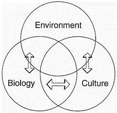 environment_boilogy_culture