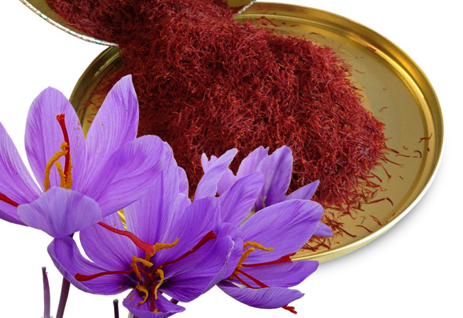 The Healing Power of Saffron