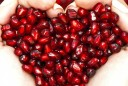 one-pomegranate-cure-one-hundred-ailments-vert