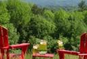 surviving-mosquito-season-adirondack-coast-three-natural-remedies-vert