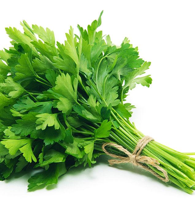 parsley-vert