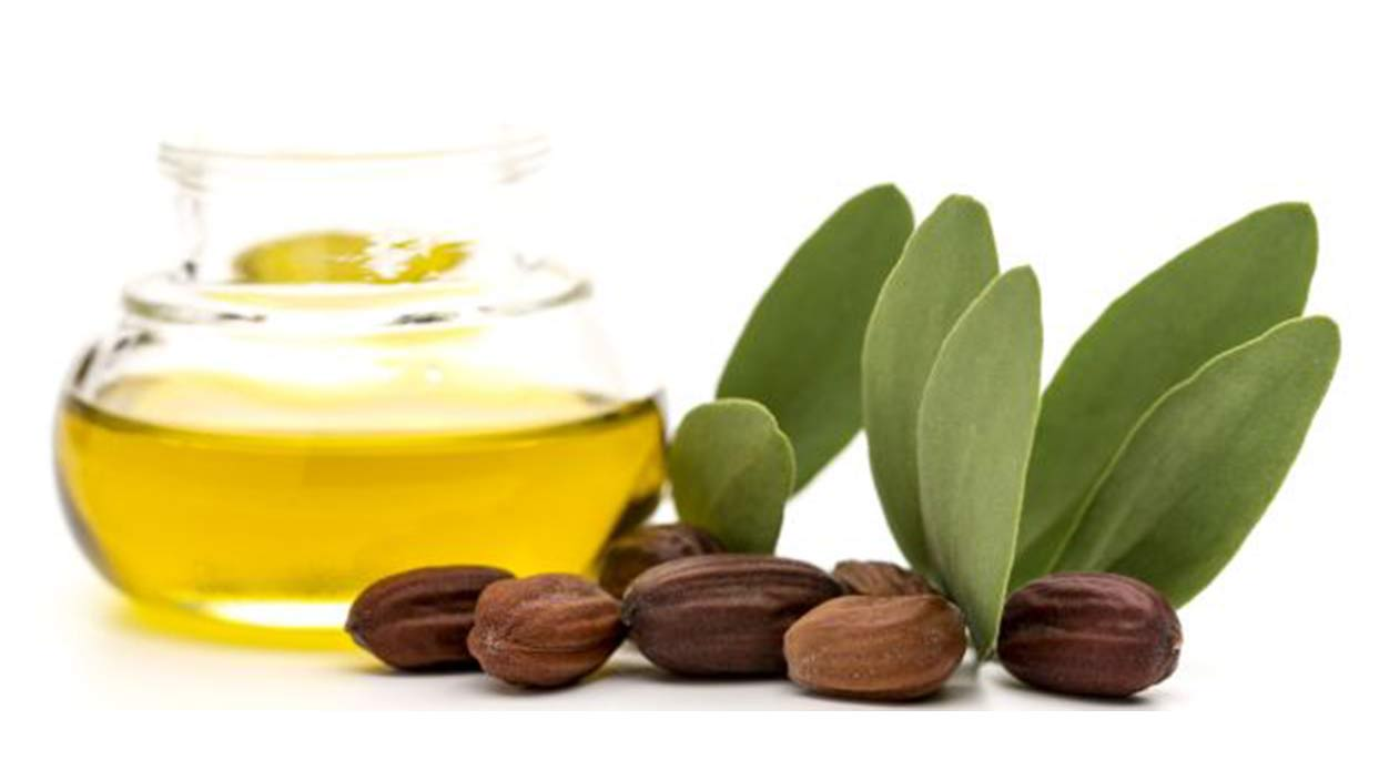 Anti-Aging Benefits of Jojoba Essential Oil